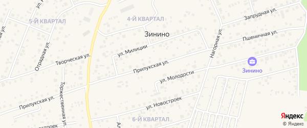 Прилукская улица на карте деревни Зинино с номерами домов