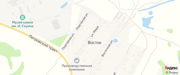 Улица Мира на карте деревни Востока с номерами домов