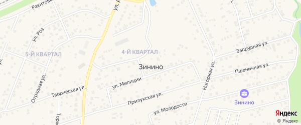 Улица Ризы Фахретдинова на карте деревни Зинино с номерами домов