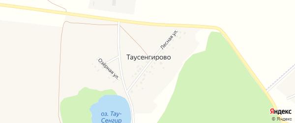 Лесная улица на карте деревни Таусенгирово с номерами домов