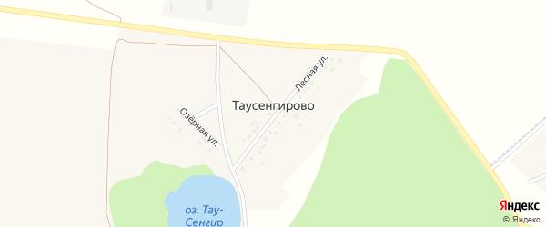 Озерная улица на карте деревни Таусенгирово с номерами домов