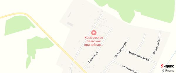 Больничная улица на карте села Камеево с номерами домов