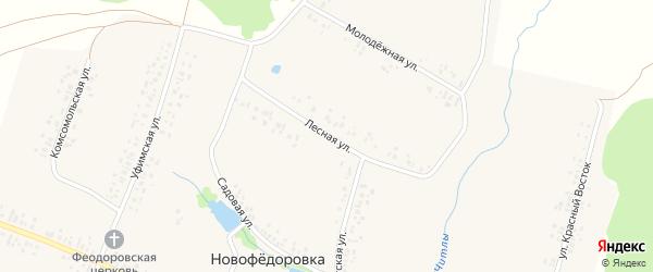 Лесная улица на карте деревни Новофедоровки с номерами домов