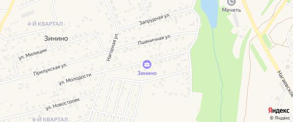 Улица Рами Гарипова на карте деревни Зинино с номерами домов