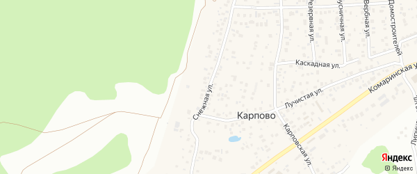 Снежная улица на карте деревни Карпово с номерами домов