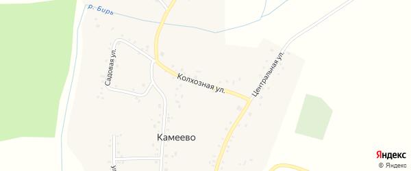 Колхозная улица на карте села Камеево с номерами домов