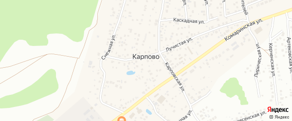 Резервная улица на карте деревни Карпово с номерами домов