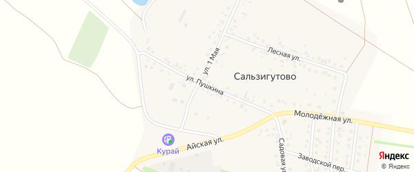 Улица Пушкина на карте деревни Сальзигутово с номерами домов