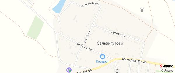1 Мая улица на карте деревни Сальзигутово с номерами домов