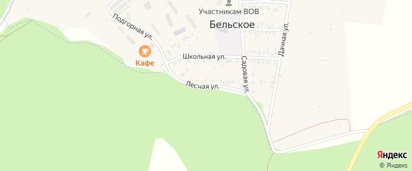 Лесная улица на карте Бельского села с номерами домов