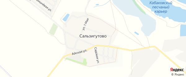 Карта деревни Сальзигутово в Башкортостане с улицами и номерами домов