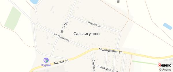 Строительная улица на карте деревни Сальзигутово с номерами домов