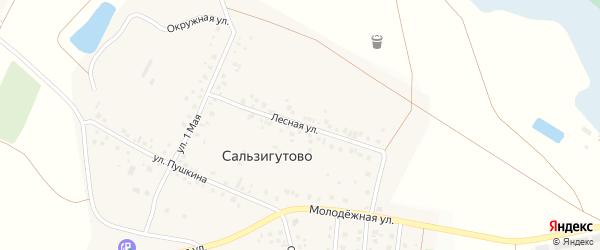 Лесная улица на карте деревни Сальзигутово с номерами домов