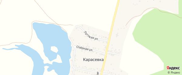 Луговая улица на карте деревни Карасевки с номерами домов