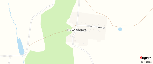 Улица Пушкина на карте деревни Николаевки с номерами домов