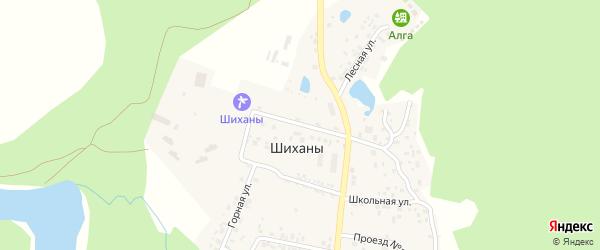 Центральная улица на карте деревни Шихана с номерами домов