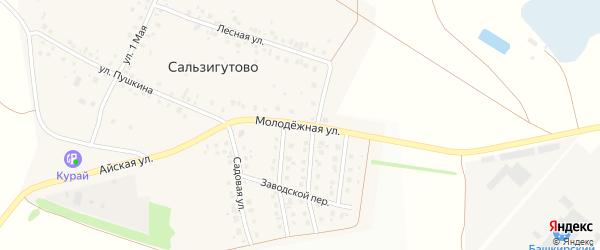 Молодежная улица на карте деревни Сальзигутово с номерами домов