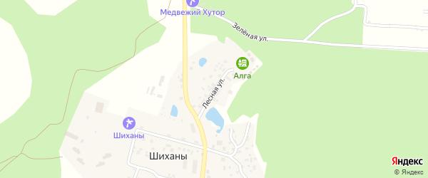 Лесная улица на карте деревни Авангарда с номерами домов