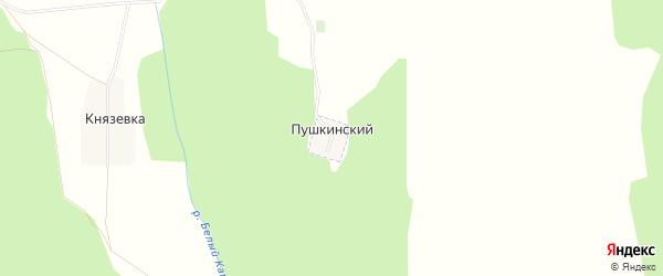 Карта Пушкинского хутора в Башкортостане с улицами и номерами домов