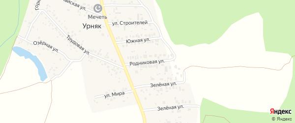 Родниковая улица на карте деревни Урняка с номерами домов