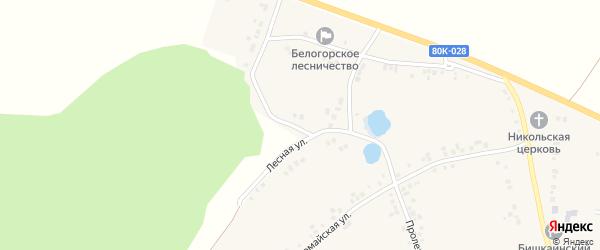 Лесная улица на карте села Бишкаина с номерами домов
