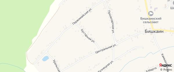 Кустарная улица на карте села Бишкаина с номерами домов