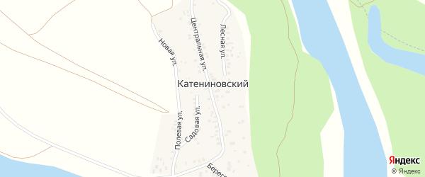 Береговая улица на карте деревни Катениновского с номерами домов