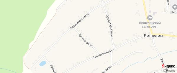 Садовая улица на карте села Бишкаина с номерами домов