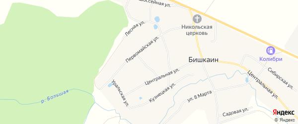 Карта села Бишкаина в Башкортостане с улицами и номерами домов