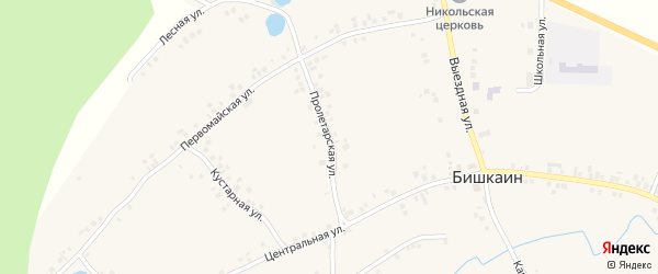 Пролетарская улица на карте села Бишкаина с номерами домов