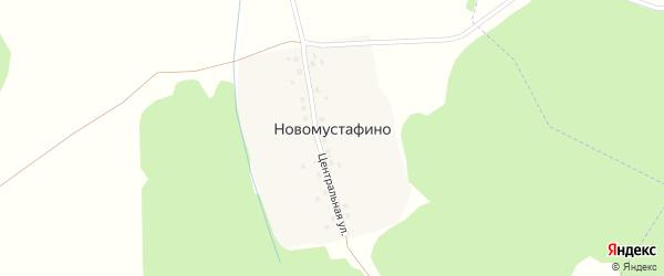 Центральная улица на карте деревни Новомустафино с номерами домов