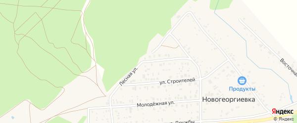 Лесная улица на карте деревни Новогеоргиевки с номерами домов
