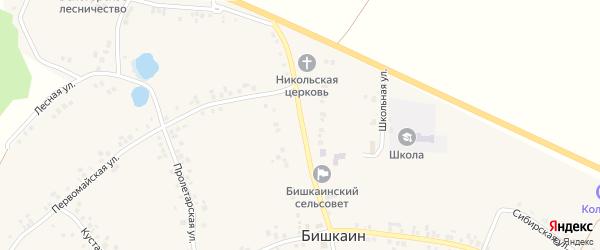 Выездная улица на карте села Бишкаина с номерами домов