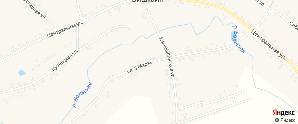 Улица 8 Марта на карте села Бишкаина с номерами домов