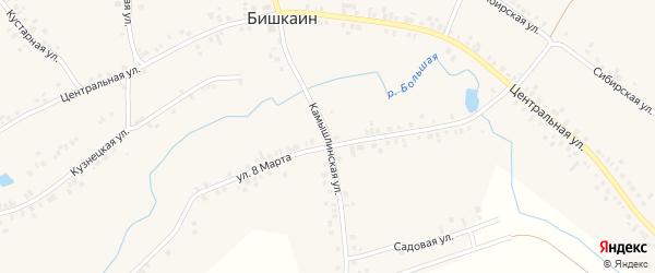 Камышлинская улица на карте села Бишкаина с номерами домов