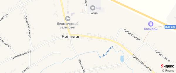 Центральная улица на карте села Бишкаина с номерами домов