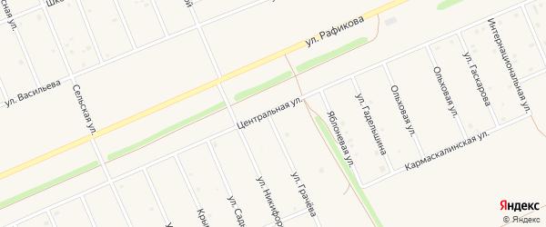 Центральная улица на карте села Кармаскалы с номерами домов