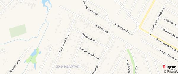 Грибная улица на карте села Нагаево с номерами домов