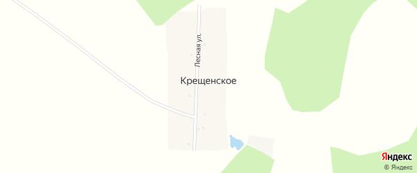 Пионерская улица на карте деревни Крещенского с номерами домов