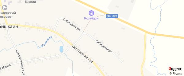 Сибирская улица на карте села Бишкаина с номерами домов