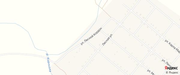 Улица Лесной Кордон на карте села Покровки с номерами домов
