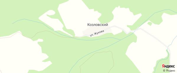 Карта деревни Козловского в Башкортостане с улицами и номерами домов