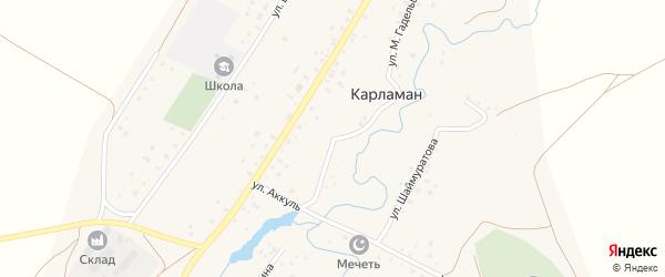 Улица М.Гадельшина на карте деревни Карламана с номерами домов