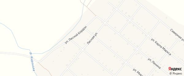 Лесная улица на карте деревни Шиханы с номерами домов
