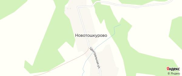 Центральная улица на карте деревни Новотошкурово с номерами домов