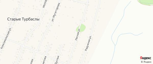 Лесная улица на карте села Старые Турбаслы с номерами домов