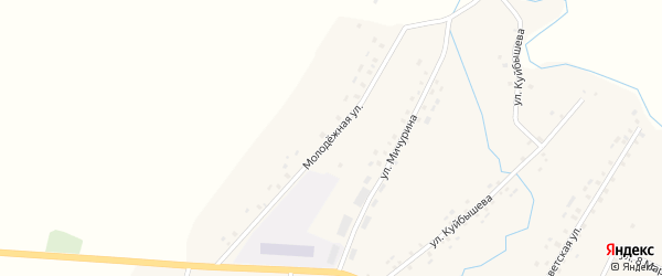Молодежная улица на карте деревни Штанд с номерами домов