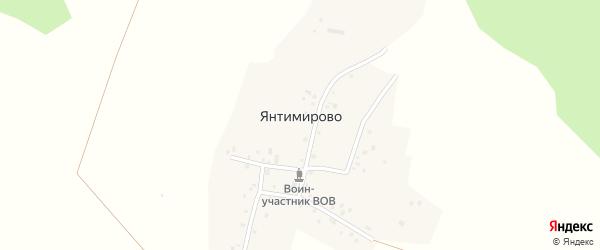 Лесная улица на карте деревни Янтимирово с номерами домов