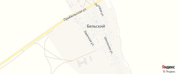 Заречная улица на карте деревни Бельского с номерами домов