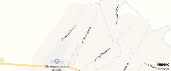 Улица Мичурина на карте деревни Штанд с номерами домов